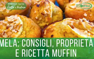 MELA: consigli, proprietà nutrizionali e ricetta Muffin