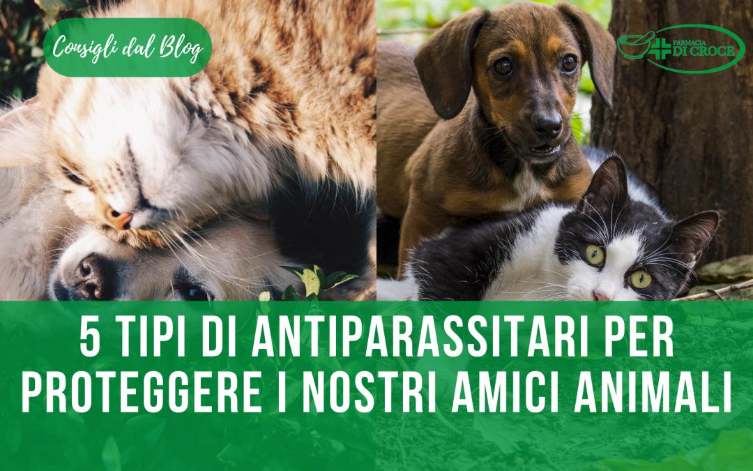 Come proteggere i nostri amici animali dai parassiti? Ecco 5 tipologie di antiparassitari ideali.