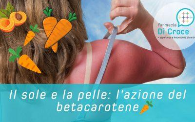 Il sole e la pelle: l'azione del betacarotene